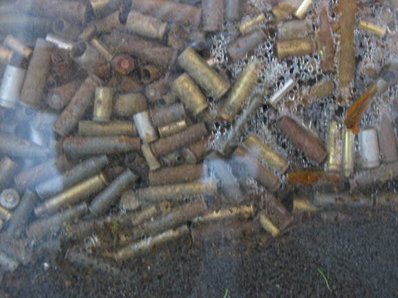 """Portraits' Aftermath (detail)"" Found Bullet Casings, Plexi, Seedlings, Wood, Soil, 2010, 7.5′x7.5′x2.5′"