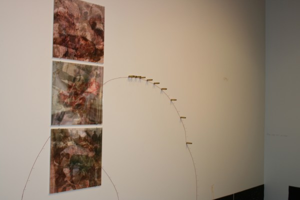 """Latent Savagery 1-3 w/ Collaborations""  Composite Photographs on Paper with Spent Bullet Casings and Red Twine, Site Specific, 2010"